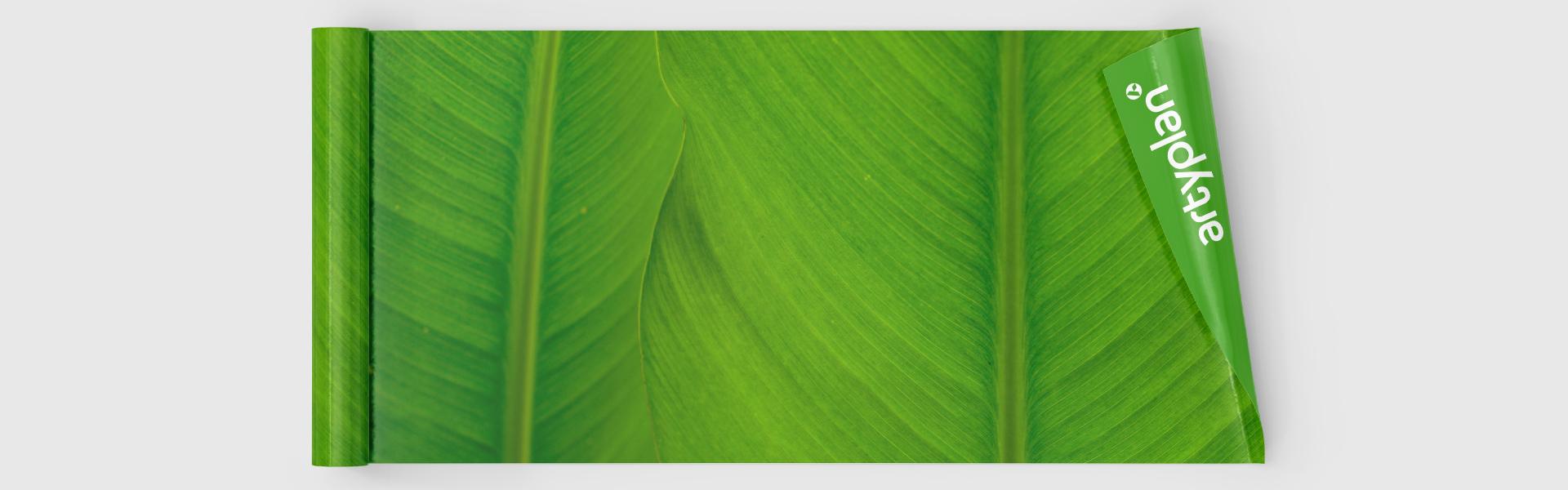 Vinilos ecológicos y sostenibles: vinilos libres de PVC