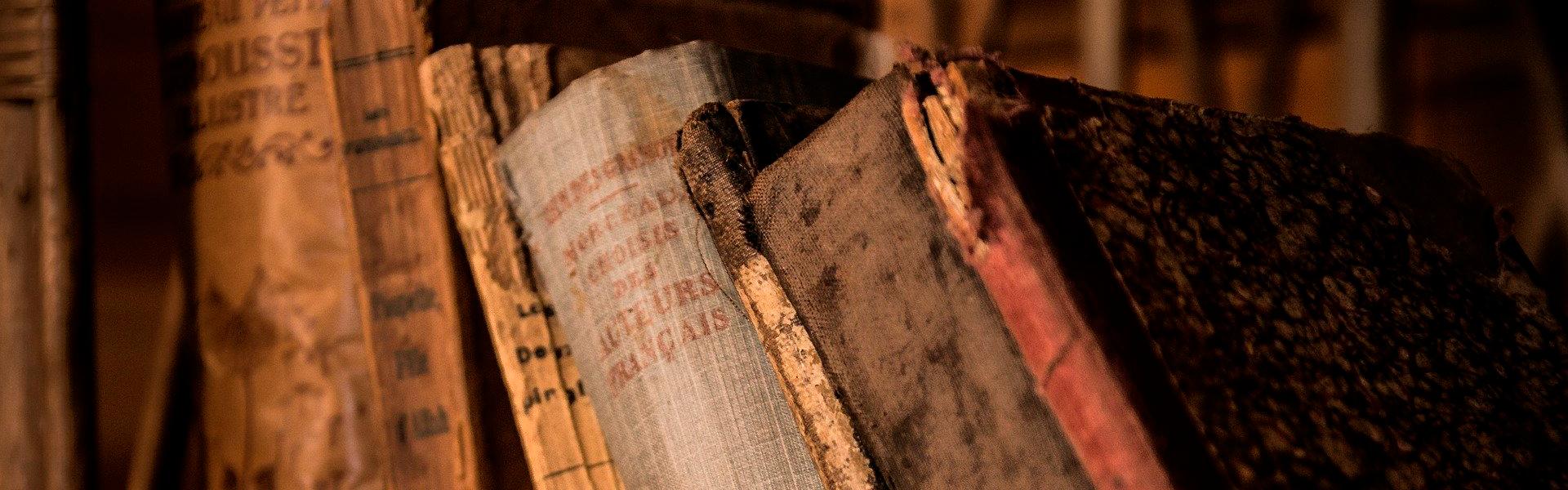 La digitalización de archivos históricos, una transformación necesaria